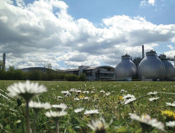 From sludge to bio-resources