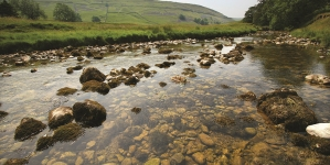 Yorkshire Water to improve 196km of rivers by reducing phosphorus levels