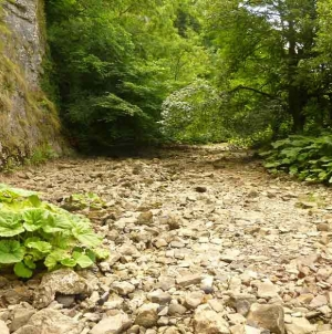 'Temporary rivers' contribute significantly to global CO2 emissions, study finds